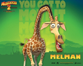 Melman - madagascar wallpaper