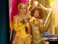 miss-congeniality - Miss Congeniality 2 wallpaper