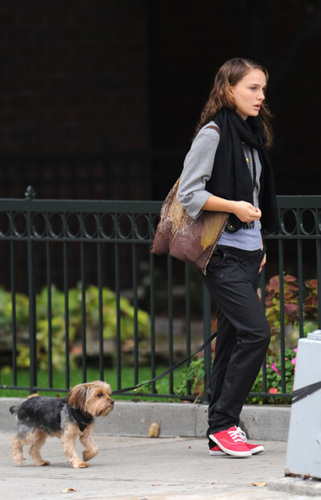 Natalie Portman walking her dog in LA (Nov 5th)