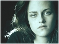 Picspam - twilight-series photo