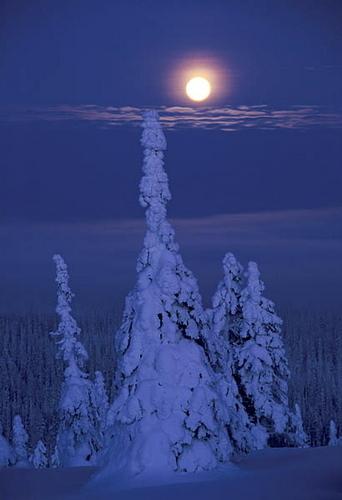 Pictures of Kuusamo and Ruka