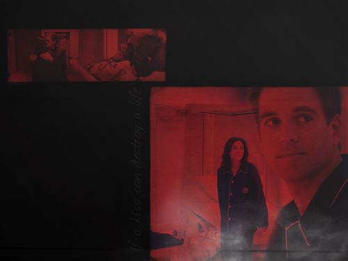 NCIS wallpaper entitled SWAK