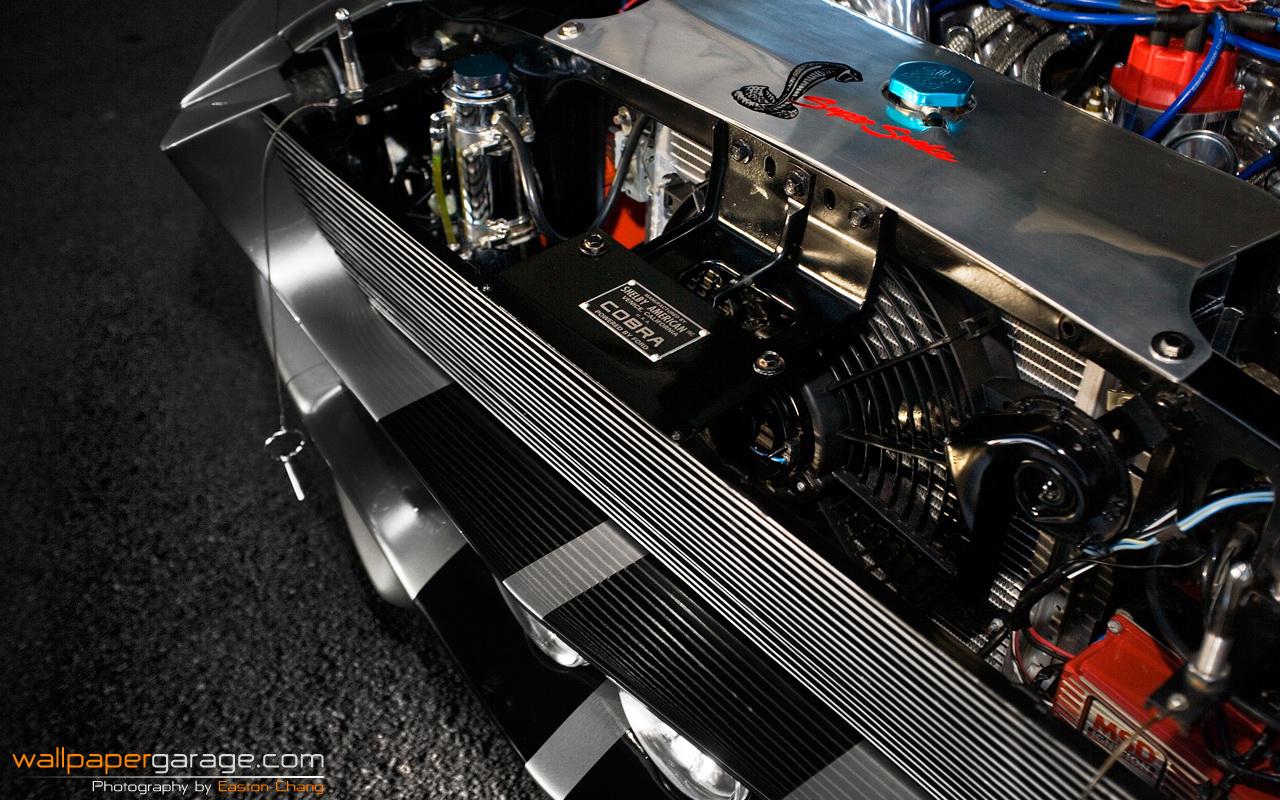 Shelby Mustang Gt500 Cars Wallpaper 2798311 Fanpop