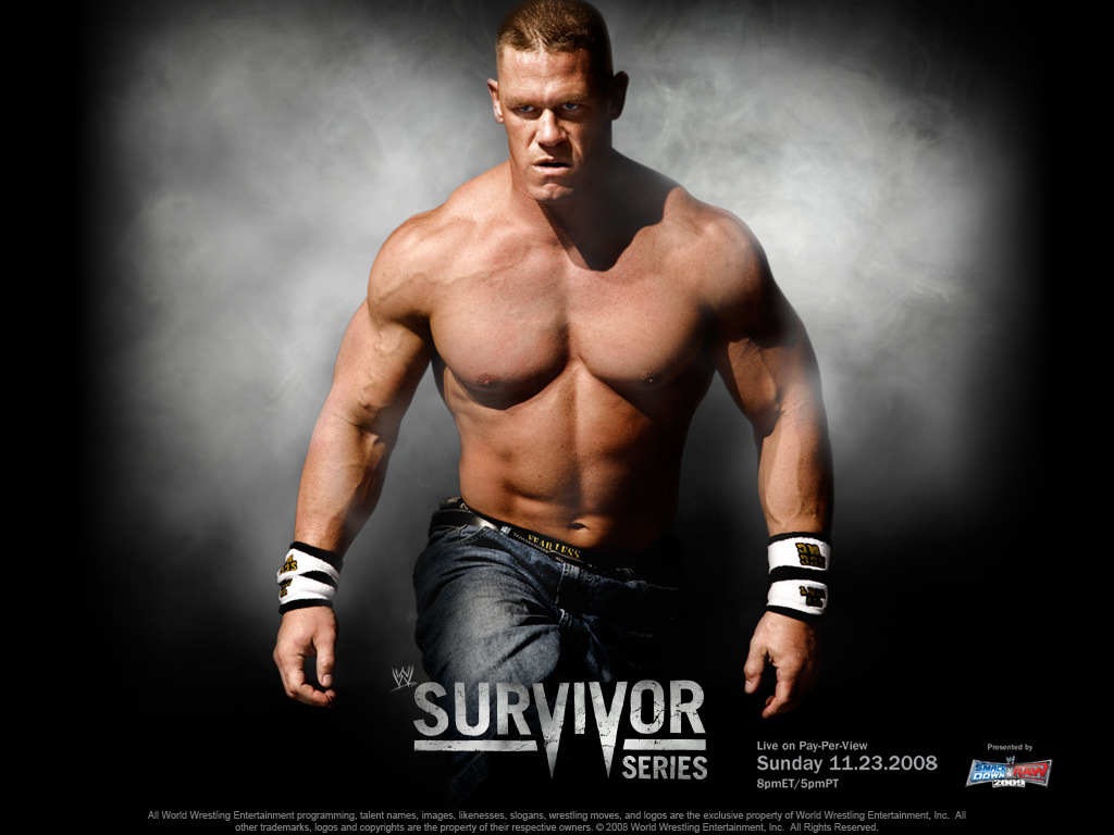 Survivor Series 2008 - professional-wrestling wallpaper