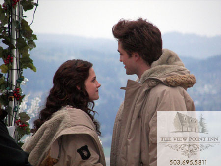 Twilight il film