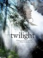 Twilight Posters - twilight-series photo