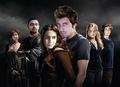 Twilight Recast - twilight-series photo