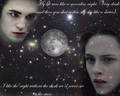 Twilight wallpaper - twilight-series photo