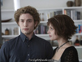 Twilightguide.com - twilight-series photo