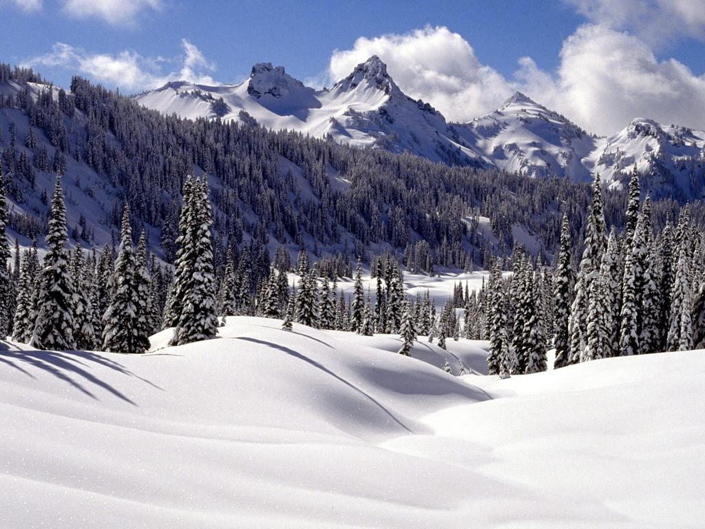Winter các hình nền