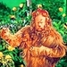 Wizard of Oz - musicals icon