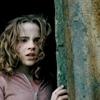 """Obrázek """"http://images2.fanpop.com/images/photos/2700000/hg-hermione-granger-2737731-100-100.jpg"""" nelze zobrazit, protože obsahuje chyby."""