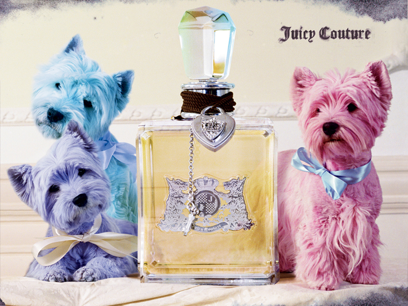 119ccc1b9b80 Juicy Couture images juicy couture HD wallpaper and background photos