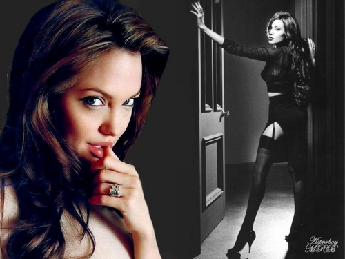Angelina Jolie images sexy images HD wallpaper and background photos