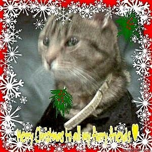"""""""Meow ...Merry pasko To All My Furry Friends"""" from Jasper"""