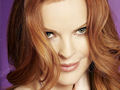 desperate-housewives - Bree wallpaper