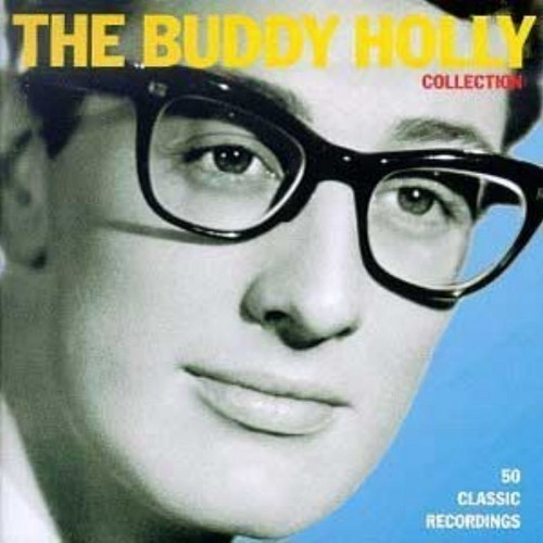 Buddy stechpalme, holly