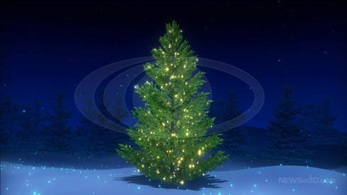 Christmas Tree  (Christmas 2008)