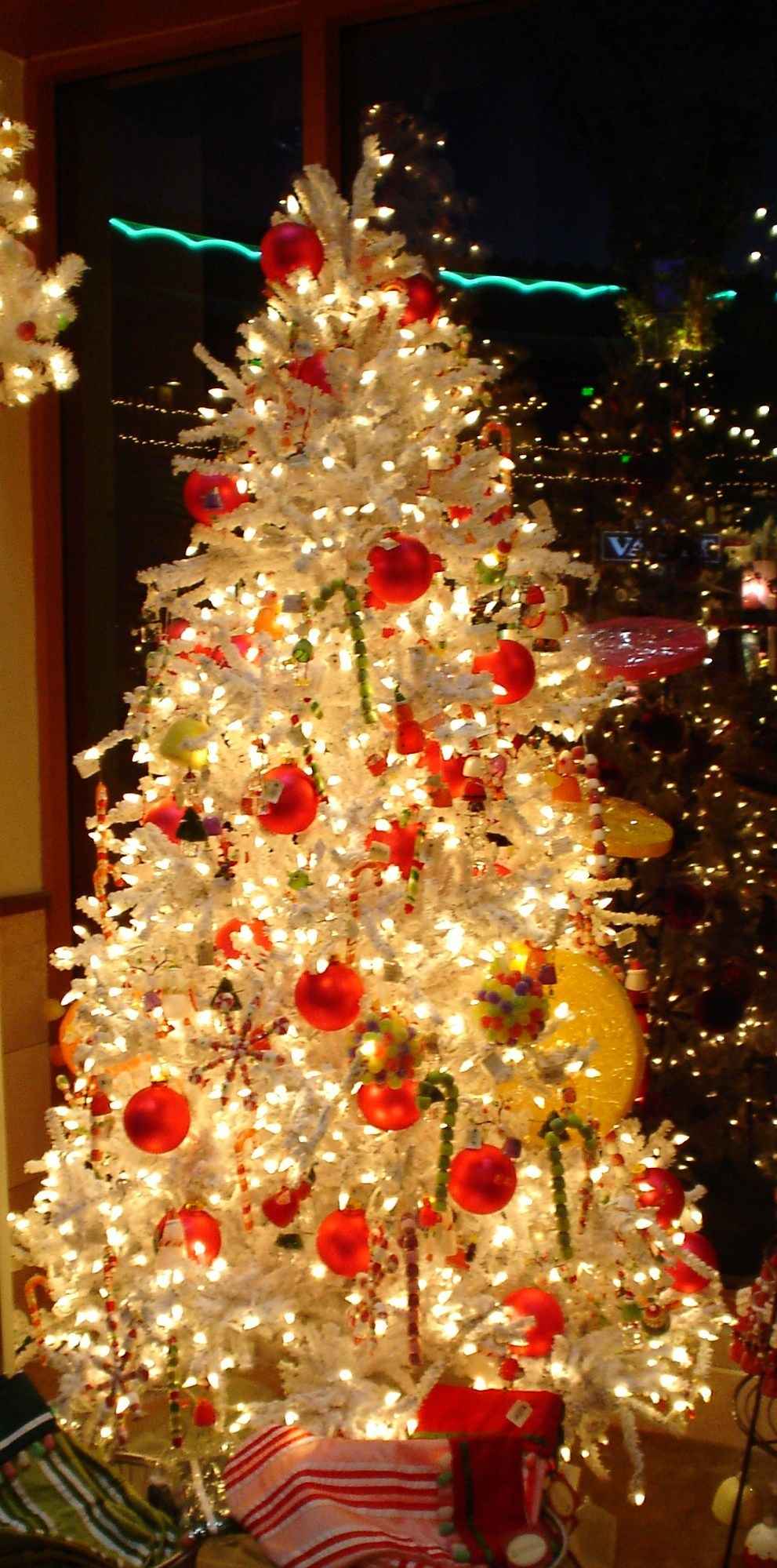 Christmas Trees - Christmas Photo (2833383) - Fanpop