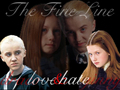 Draco and Ginny - draco-and-ginny wallpaper