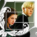 Draco and Ginny - draco-and-ginny icon