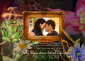 E+B - Twilight - twilight-series photo