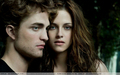 EW Cover ; Session 2 - twilight-series photo