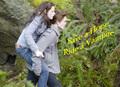 Edward & Bella - Ride A Vampire - twilight-series photo
