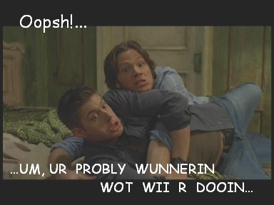 "Wincest वॉलपेपर probably containing a portrait called Funny ""Wincest"" Pics"