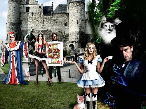 House in Wonderland!