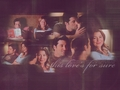 Meredith & Derek - meredith-and-derek wallpaper