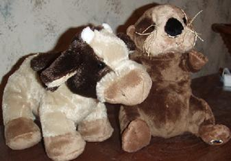 New Webkinz of November 2008: Brown Cow and Sea memerang, otter