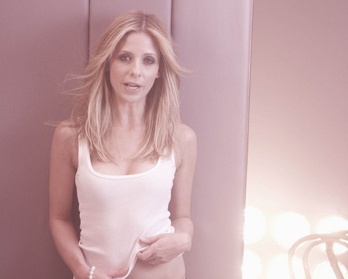Sarah Michelle Gellar achtergrond entitled New sexy SMG photoshoot!! 2008