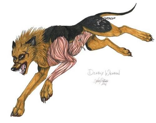 Ginga Densetsu Weed wolpeyper called P4