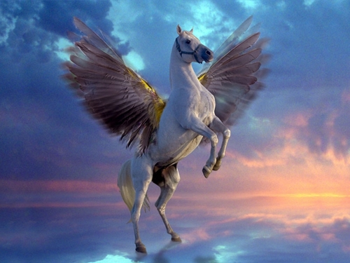 Pegasus - greek-mythology Wallpaper