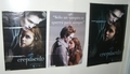 Posters - twilight-series photo