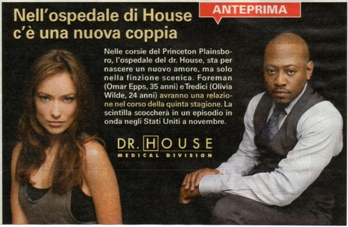 Scan about the Foreman/Thirteen relationship in the Italian TV Guide