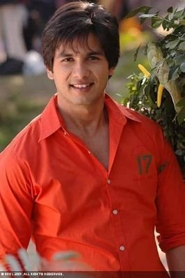 Shahid Kapoor - bollywood Photo