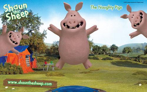 Shaun the domba