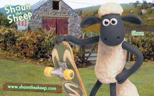 Shaun the овца, овцы