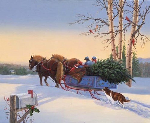 Sleigh carrying a natal árvore