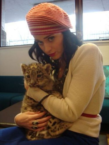 katy + snow leopard