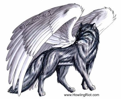 winged chó sói, sói