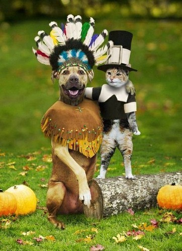 """HAPPY THANKSGIVING, HUMANS! Do We Look Awesome или What?!! ...hehehe"
