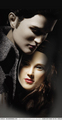 Action Figures - twilight-series photo
