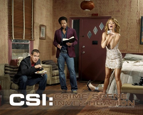 csi wallpaper probably containing a drawing room, a sign, and a living room called csi