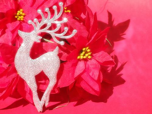 圣诞节 Reindeer