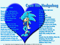 Cyan's Official Profile!! - cyan-the-hedgehog photo