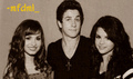Demi,David,& Selena