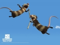Ice Age 2: The Meltdown - ice-age wallpaper